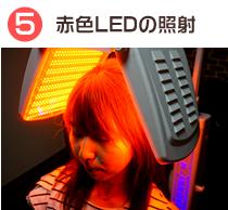 赤色LEDの照射